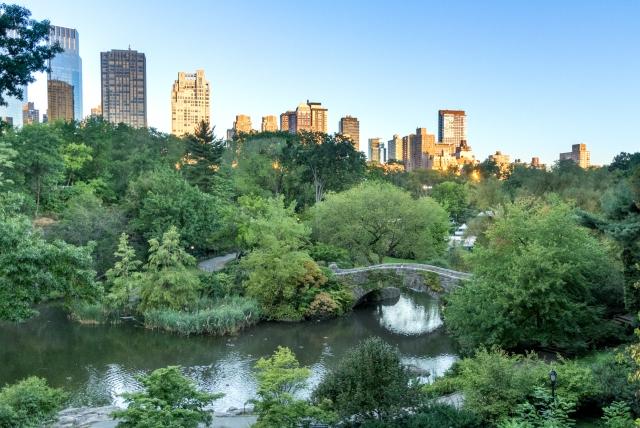 Central Park au lever du soleil